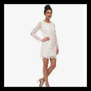 FRENCH CONNECTION Lace Nebraska Dress NWT SZ 4
